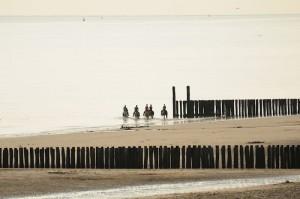 Paardrijden Strand Dishoek