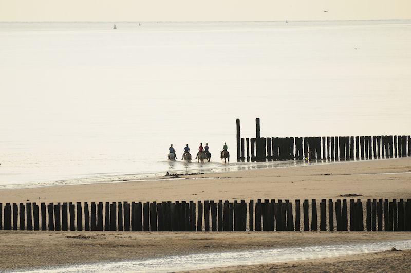 Paardrijvakantie aan zee steeds populairder