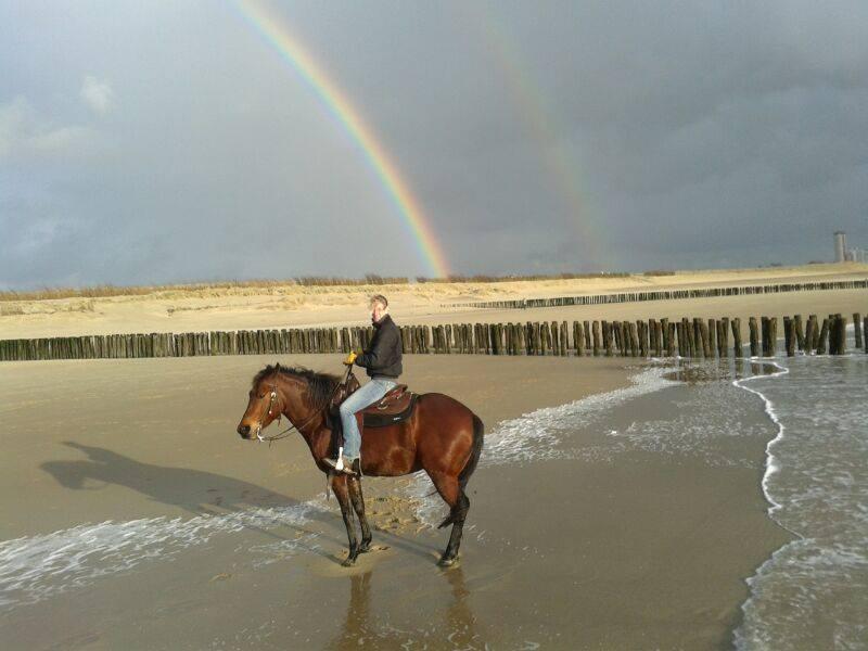 Lekker uitwaaien op het Zeeuwse strand