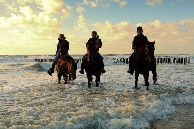 Strandrit te paard aan de Zeeuwse kust
