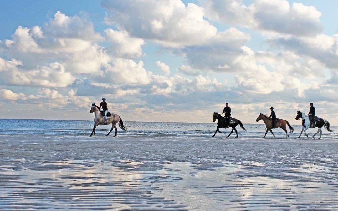 Op vakantie met uw paard bij Ride by the Sea !!!