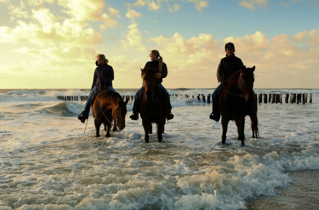 DECEMBER-ACTIE bij Ride by the Sea: 20 % korting