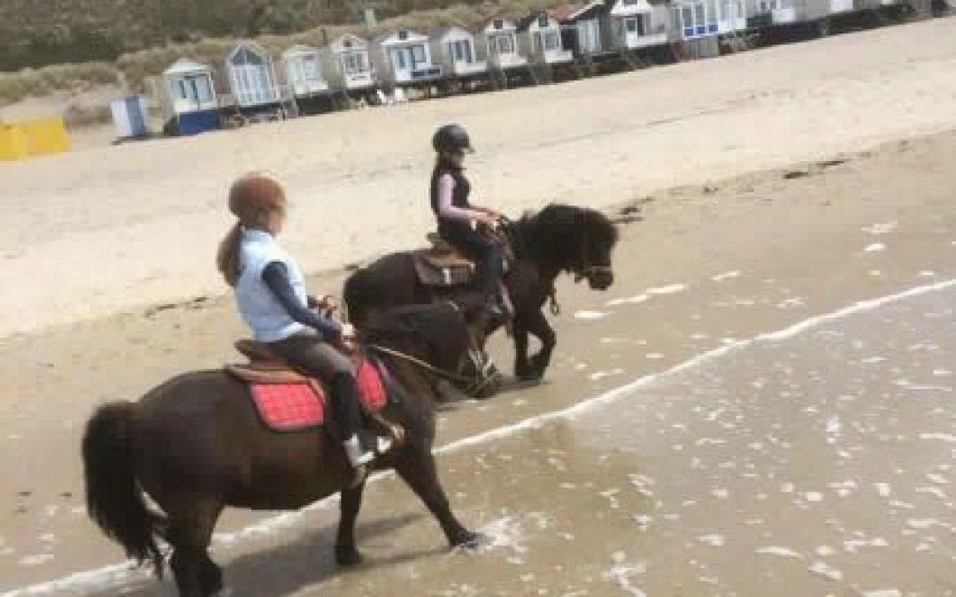 Lekker met paarden naar het strand, echt super !