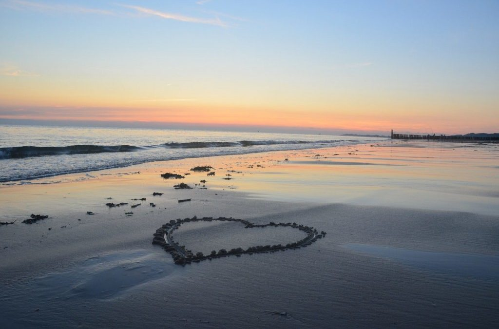 Nieuw wetenschappelijk bewijs: Zeeuwse zeelucht is goed voor je gezondheid
