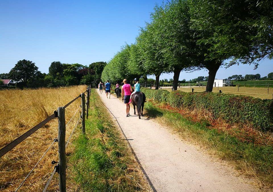 Nederlanders deze zomer massaal in eigen land op vakantie