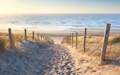 Voorjaar verwacht in Zeeland !